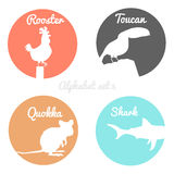 Color animals silhouettes labels in colorful. Circles. Wild animal logotype or alphabet isolated on white background. vector illustration Stock Photos