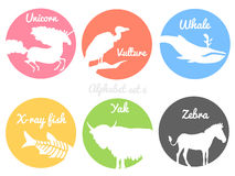 Color animals silhouettes labels in colorful Stock Photography