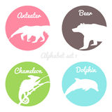 Color animals silhouettes labels in colorful. Circles. Wild animal logotype or alphabet on white background. Anteater and bear with chameleon and dolphin Royalty Free Illustration