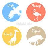 Color animals silhouettes labels in colorful Stock Image