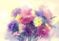 Color asters watercolor background vector illustration