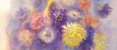 Color asters watercolor background Stock Image