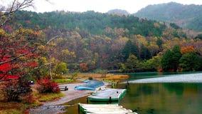 Color of autumn at Chuzenji Lake after rain