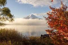 Color of autumn leaves  and Mt.Fuji  at Lake Kawakuchi. Color of autumn leaves  and Mt.Fuji with misty in the morning at Lake Kawakuchi Stock Images