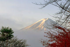 Color of autumn leaves  and Mt.Fuji with misty in the morning at. Lake Kawakuchi Royalty Free Stock Photos