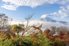 Color of autumn leaves  and Mt.Fuji with misty in the morning at. Lake Kawakuchi Stock Image