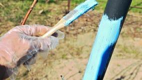 Color azul del cepillo y de la pintura en el jardín de Iin de la espaldera del metal almacen de video