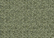 Color background bumpy green khaki texture stone concrete. Background bumpy green khaki texture stone concrete royalty free stock images