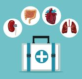Color background with first aid box with icons circular frame intern organs human body. Vector illustration Stock Photo