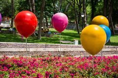 Color baloons and flowers in a park Stock Photo