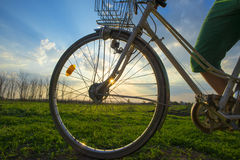 Color bike in sunny day Stock Photography