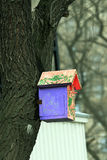 Color birdhouse on a tree in the city Stock Photography