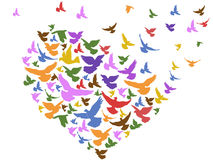 Color birds flying with heart. Isolated color birds flying with heart from white background stock illustration