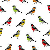 Color birds seamless vector print. EPS10 file vector illustration