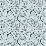 Color birds set seamless pattern Stock Image