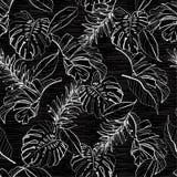 Color blanco y negro monótono elegante del le floral y tropical ilustración del vector