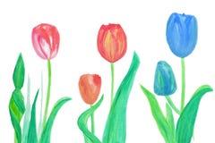 Color blommor i vattenfärghand målade Royaltyfria Bilder