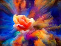 Color Bloom. Blooming rose in swirl of colorful paint as backdrop for subject of art, creativity and imagination. Custom background series royalty free illustration