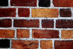 Color bricks wall Royalty Free Stock Images