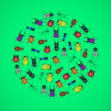 Color bugs and beetles icons in circle eps10 Royalty Free Stock Photo