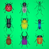 Color bugs and beetles icons set Royalty Free Stock Photos