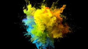 Color Burst iridescent multicolored rainbow powder explosion fluid ink particles stock illustration