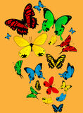 Color butterflies. Sketch on a light orange background Royalty Free Stock Image