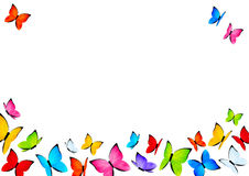 Color butterflies background with copy space Stock Photo