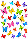 Color butterflies isolated on white Royalty Free Stock Photos