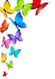Color butterflies Stock Images