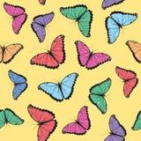 Color Butterflies Seamless Pattern Stock Photos