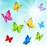 Color butterflies on sunny background Royalty Free Stock Images