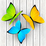 Color butterflies on wood Royalty Free Stock Photo