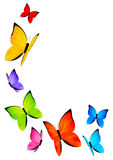 Color butterflies Stock Photography