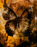 Color butterfly, illustration and mixed medium, abstract  background, vintage rust effect. Stock Image