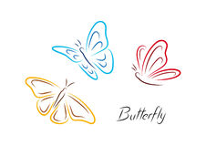 Color butterfly royalty free stock photo
