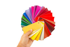 Color cart in hand Stock Images