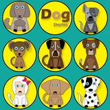 Color cartoon dog in yellow circle. Stock Photo