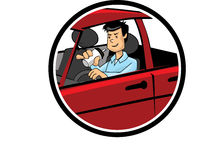 Color cartoon of a man drinking and driving Stock Photography