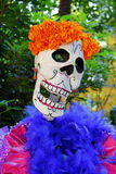 Color catrina VII Royalty Free Stock Photography