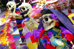 Color catrina VIII Stock Images