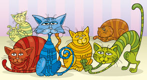 Color cats group Royalty Free Stock Image