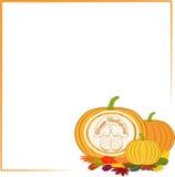 Color celebratory background, turkey bird Stock Images