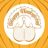 Color celebratory background, turkey bird Royalty Free Stock Photos