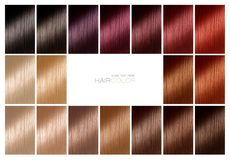Color chart for hair dye. Tints. Hair color palette with a range. Color chart for hair dye. Hair color palette with a wide range of swatches showing different royalty free stock photography