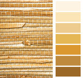 Color chart palette swatches. Grasscloth wallpaper color chart palette swatches royalty free stock image
