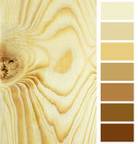 Color chart selection palette Stock Images