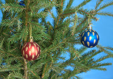 Color Christmas balls on new year tree closeup Stock Image