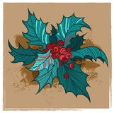 Color Christmas holly Royalty Free Stock Image