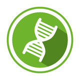 Color circular emblem with DNA code genetical Stock Image